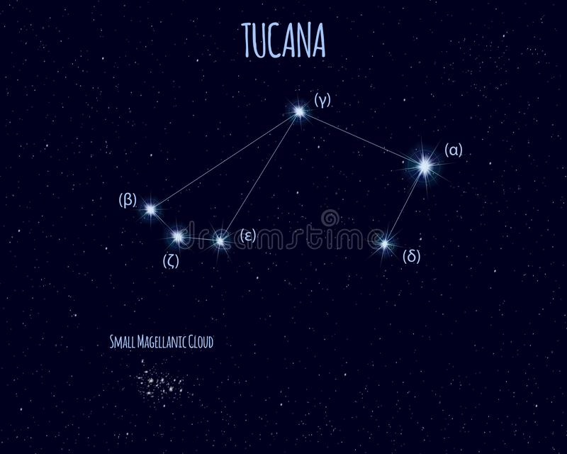Tucana constellation, vector illustration with the names of basic stars vector illustration