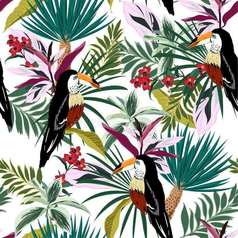 Tucano colorido da floresta tropical brilhante do verão, pássaros exóticos, tr ilustração royalty free