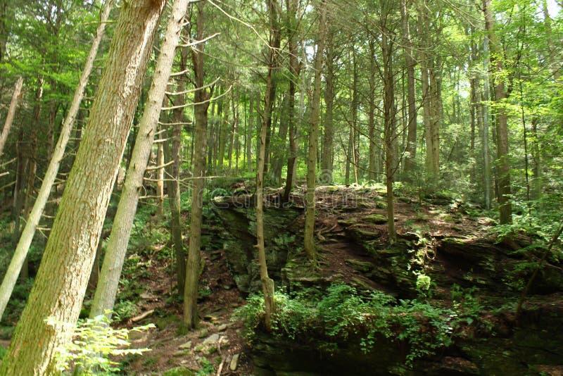 Tucquan Glen nature preserve stock photos