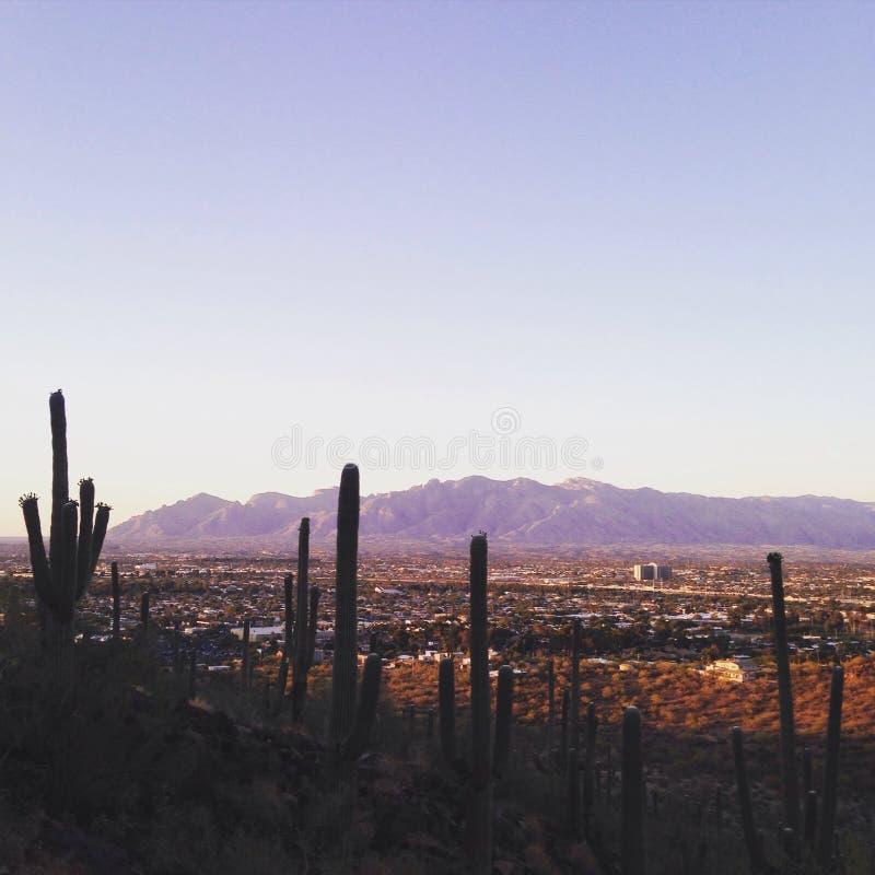 Tucson an der Dämmerung lizenzfreies stockbild