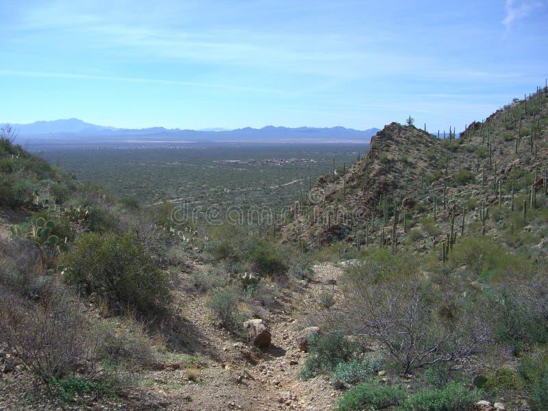 Download Tucson Valley stock image. Image of dessert, vegitation - 4377977