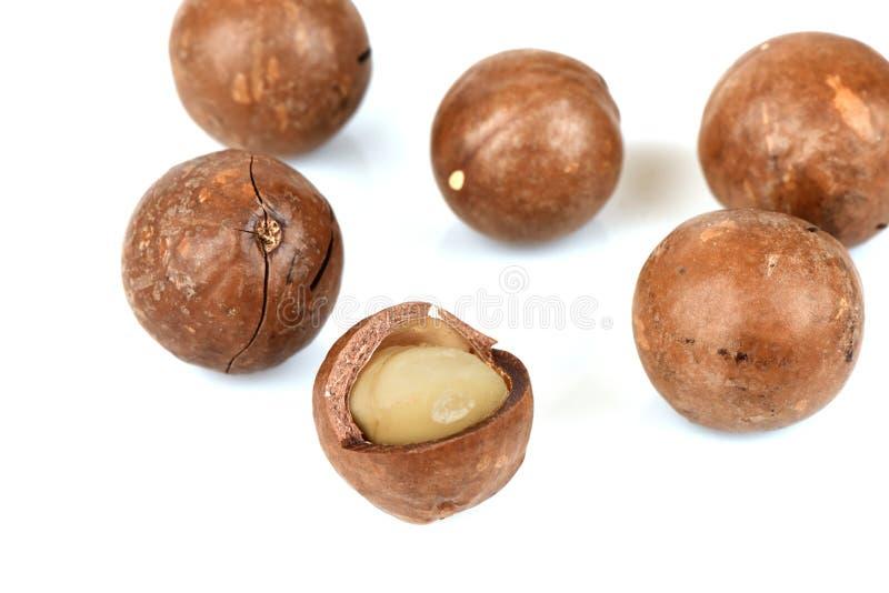 Download Tuercas De Macadamia En El Fondo Blanco Imagen de archivo - Imagen de antioxidante, cierre: 64202507