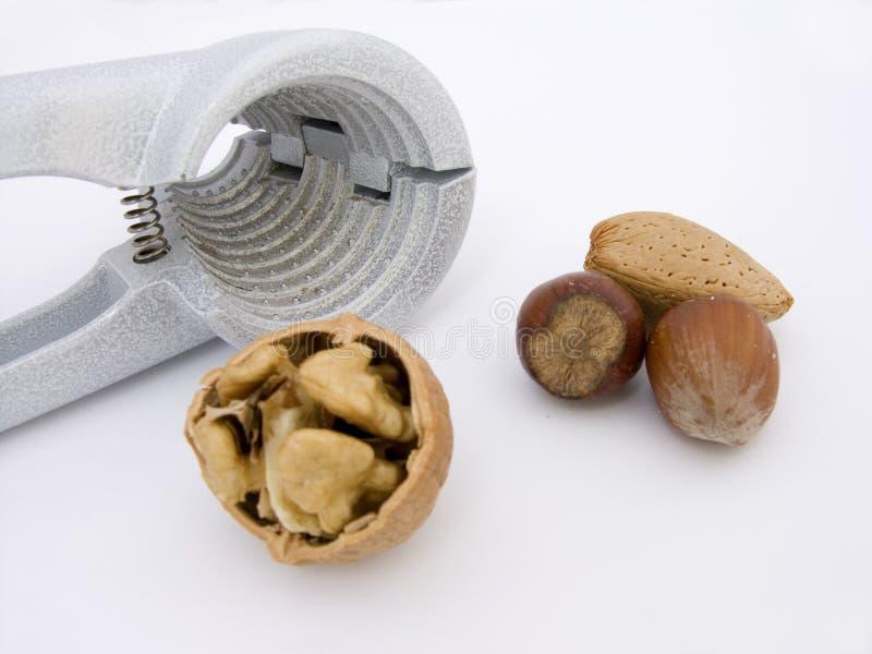 Tuercas y galleta imagen de archivo