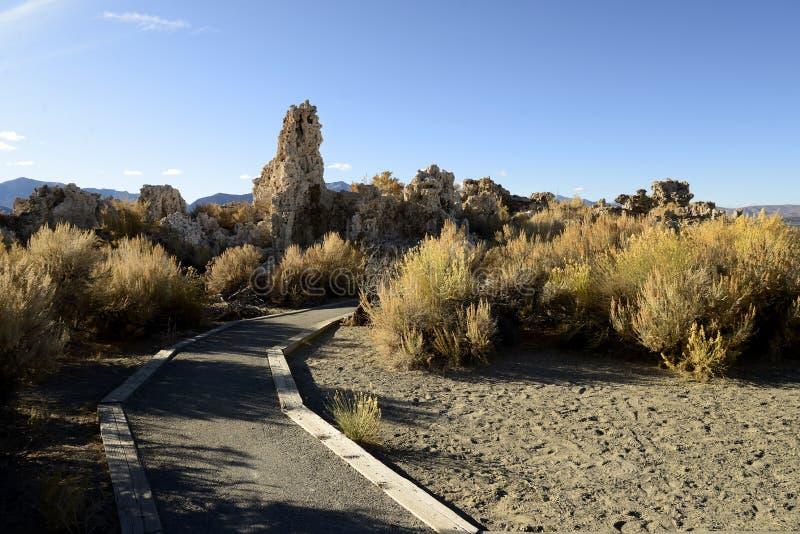 Tufas vid Monosjön i östra Sierras Kalifornien royaltyfri foto