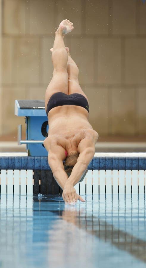 Tuffo del nuotatore fotografia stock