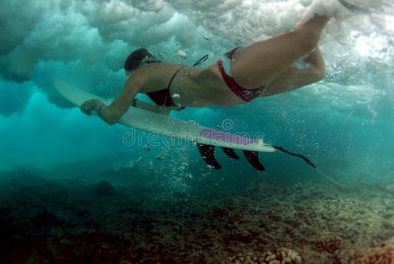Tuffo dell'anatra del bikini fotografie stock