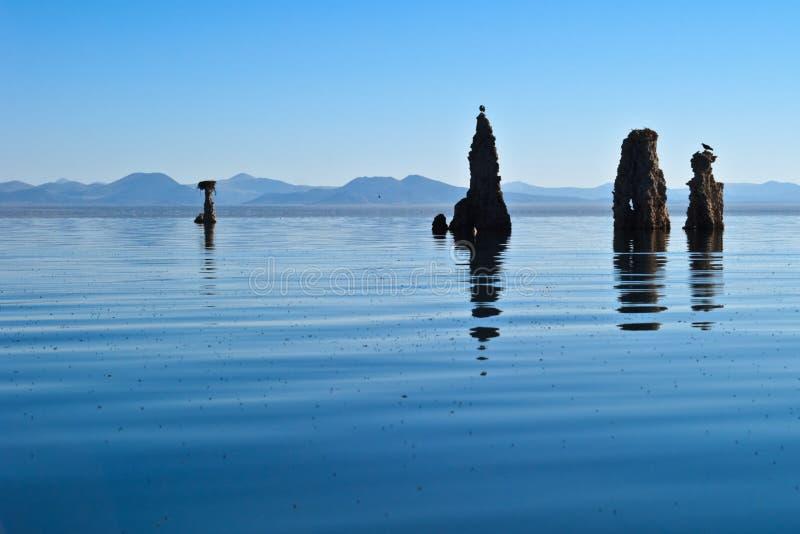 Tufo no mono lago foto de stock