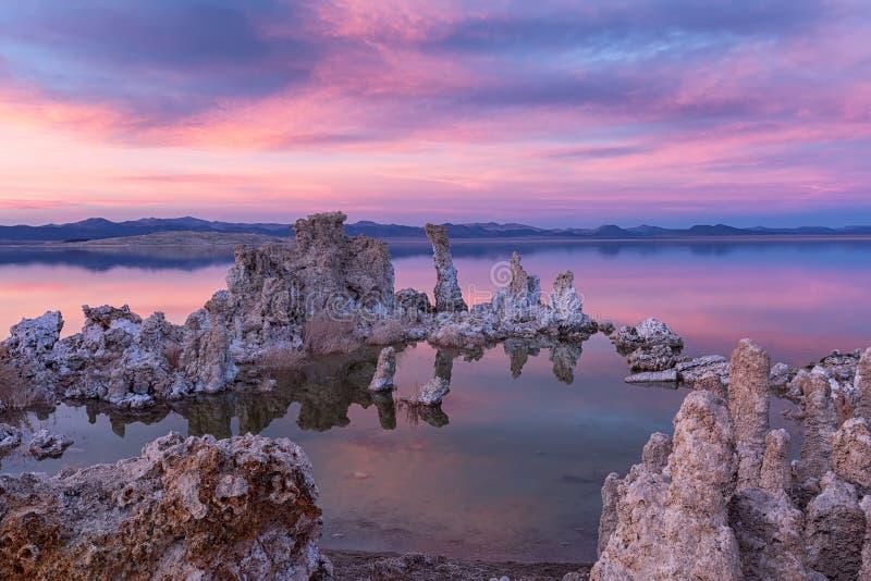 Tufos no mono lago no por do sol foto de stock