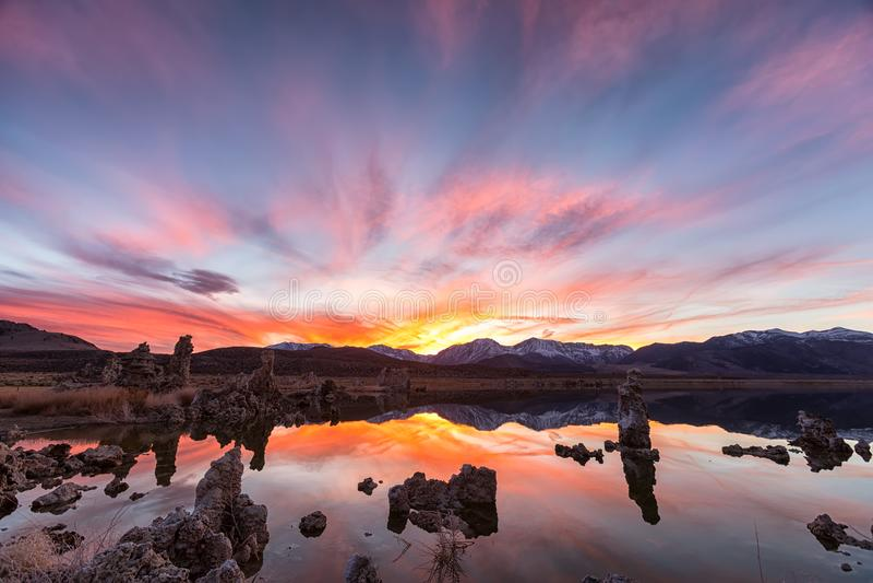 Tufos no mono lago no por do sol fotografia de stock royalty free