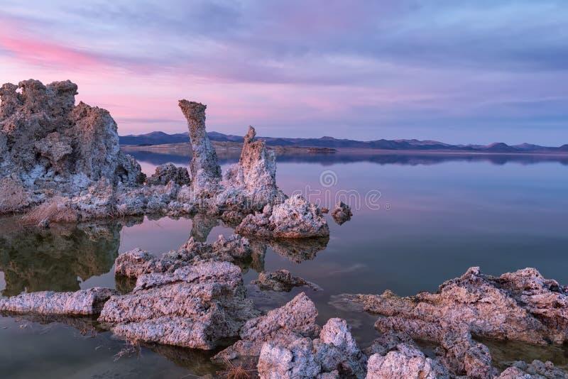 Tufos no mono lago no por do sol imagens de stock royalty free