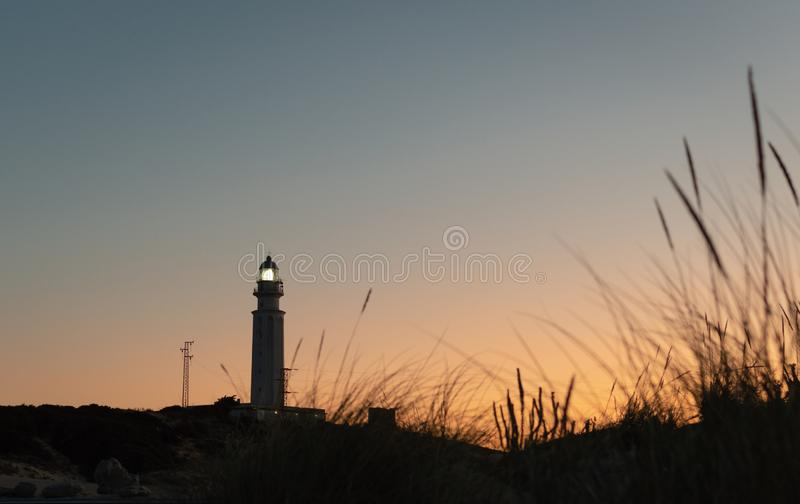 Tuft of beach grass in the sunshine and a lighthouse tower at sunset Trafalgar, Cadiz, Spain royalty free stock photography