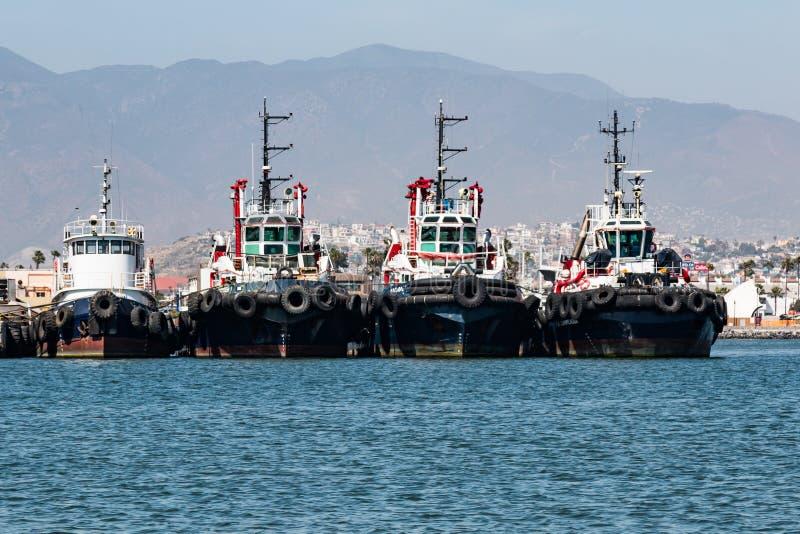 Tug Boats in Ensenada-Haven stock foto