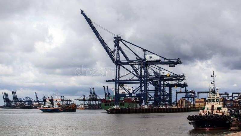 Tugboat 2 & żurawie obrazy royalty free