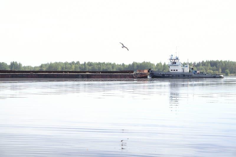 Tugboat συντρίμμια άμμου ωθήσεων κατά μήκος του ποταμού στοκ εικόνες