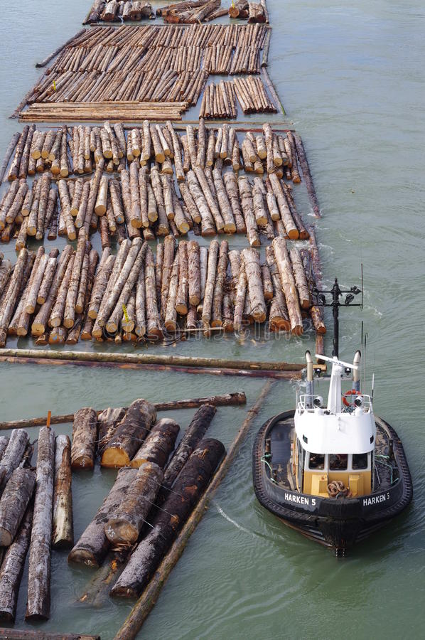 Tugboat and lumber. Tugboat towing lumber on the river stock image