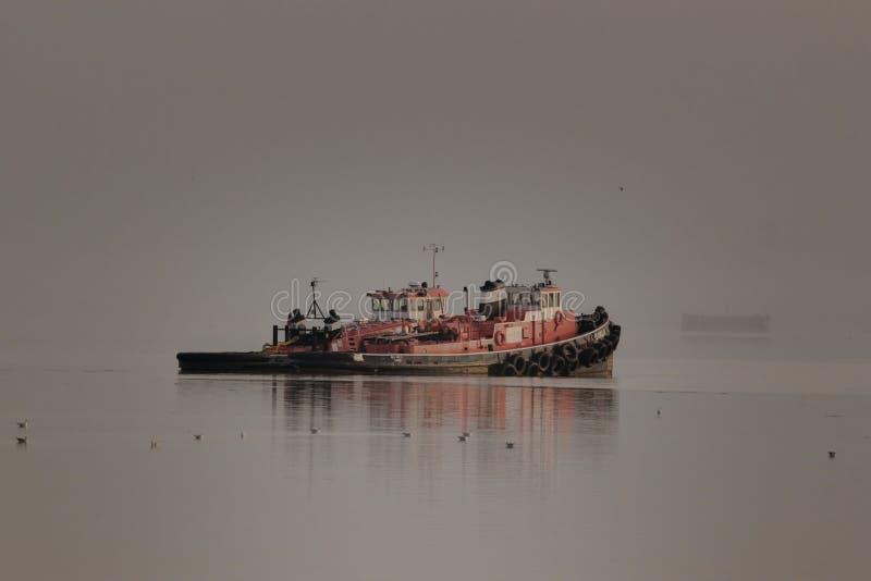 Tugboats Cumujący na Rzecznym Thames na Mgłowym ranku obraz stock