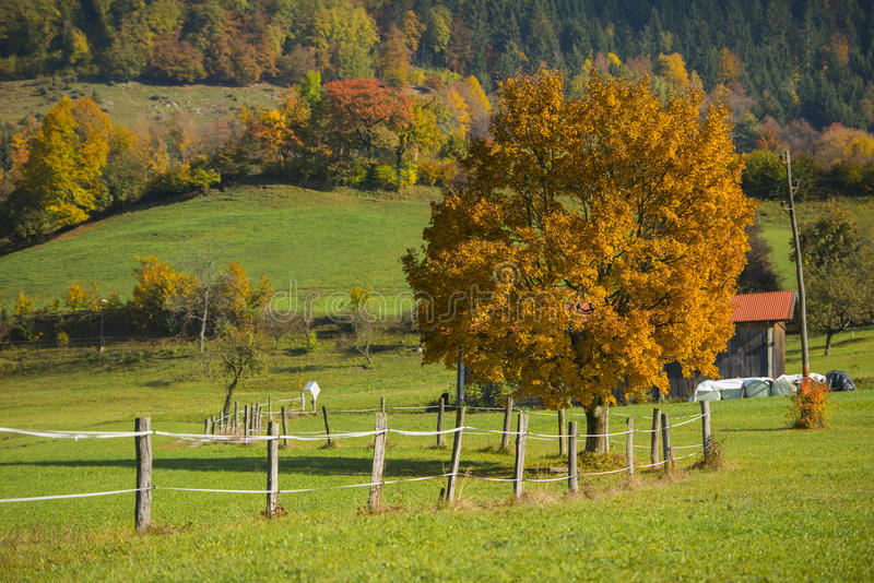 Tuhinj, Kamnik, Slovenië royalty-vrije stock foto