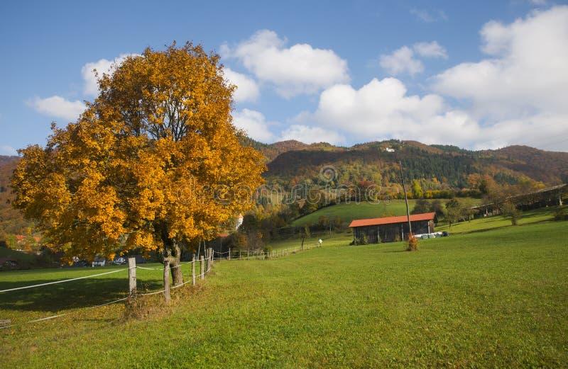 Tuhinj, Kamnik, Slovenia. Autumn in Tuhinj, Kamnik, Slovenia royalty free stock images