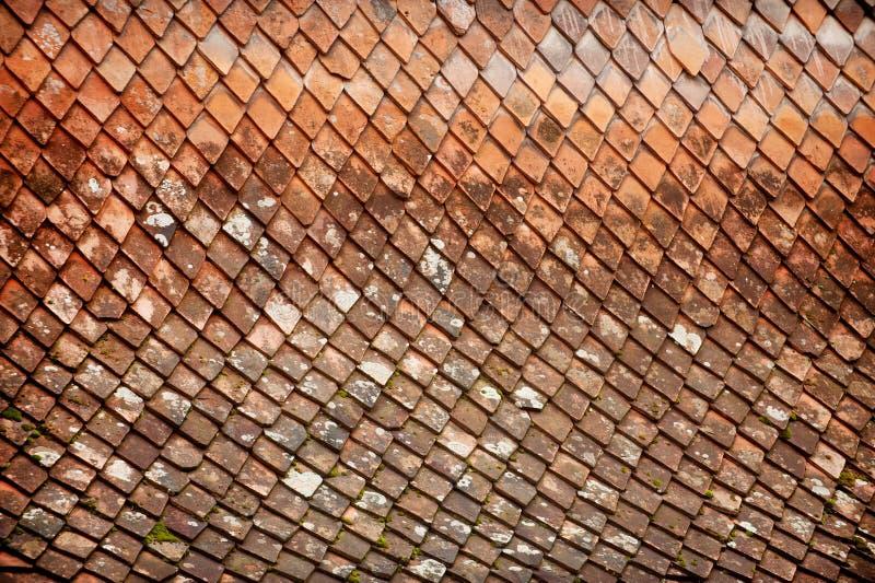 Tuile de toit superficielle par les agents photographie stock libre de droits
