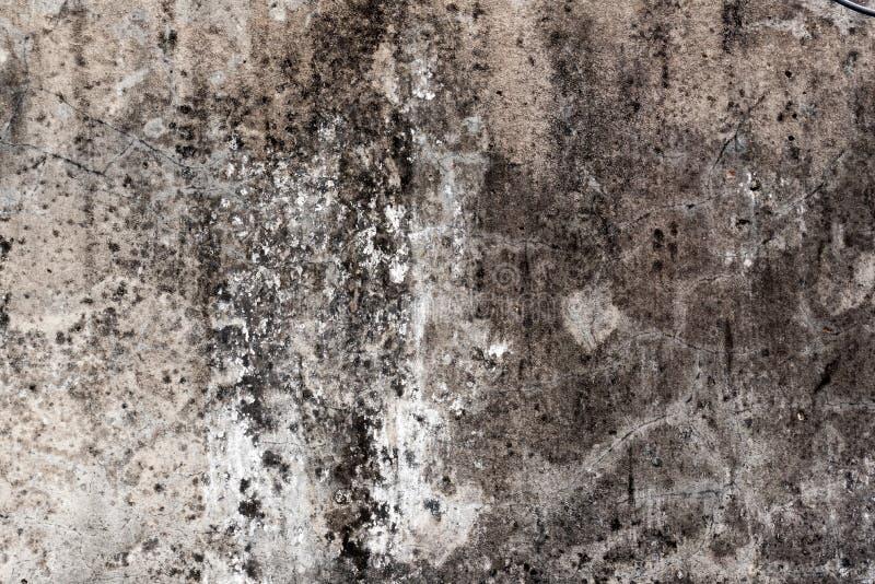 Tuile, fond de mortier image stock