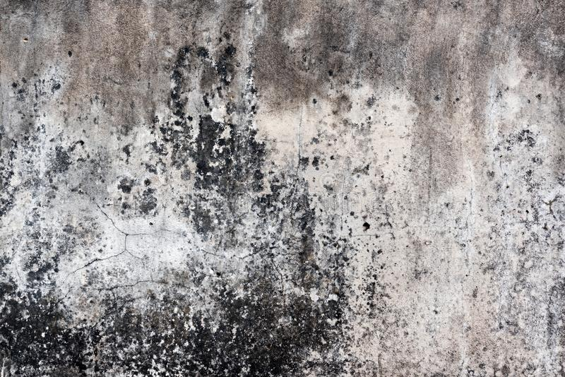 Tuile, fond de mortier photos libres de droits