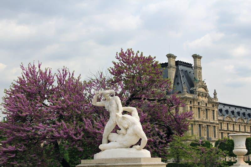 Tuileries庭院在巴黎。 免版税图库摄影