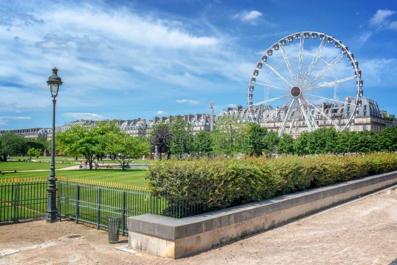 Tuileries庭院,弗累斯大转轮背景,巴黎法国 免版税图库摄影