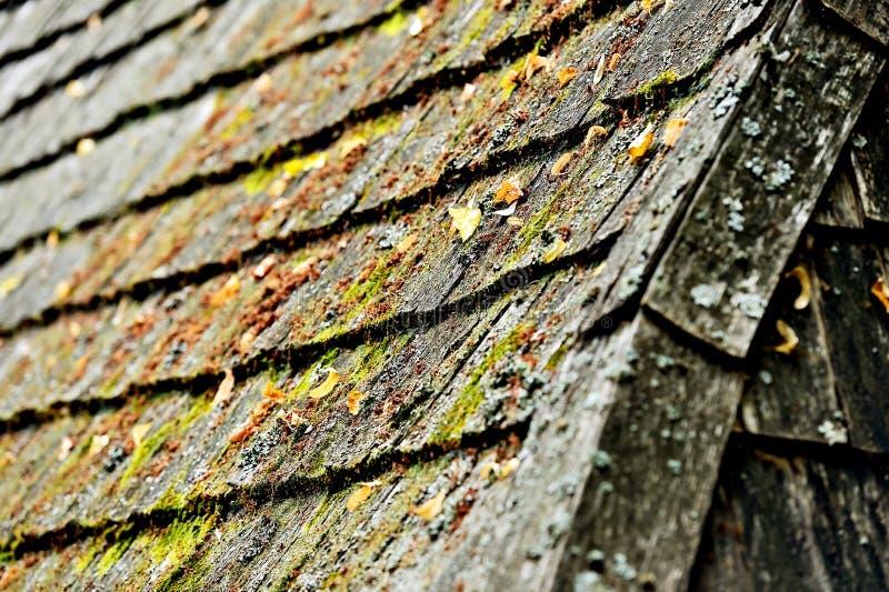 Tuiles de toit en bois superficielles par les agents photo stock