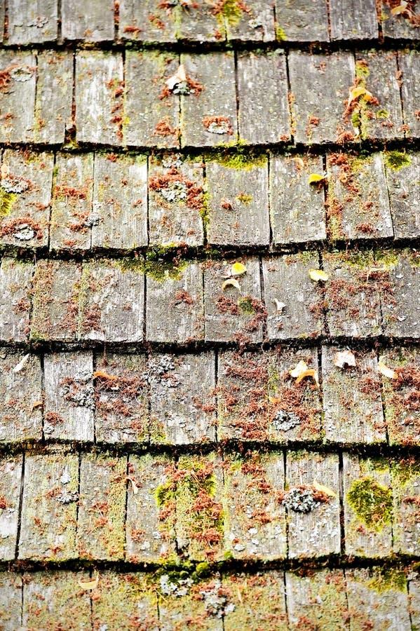 Tuiles de toit en bois superficielles par les agents images stock