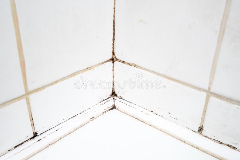 Tuiles sales dans la douche de salle de bains photo libre de droits