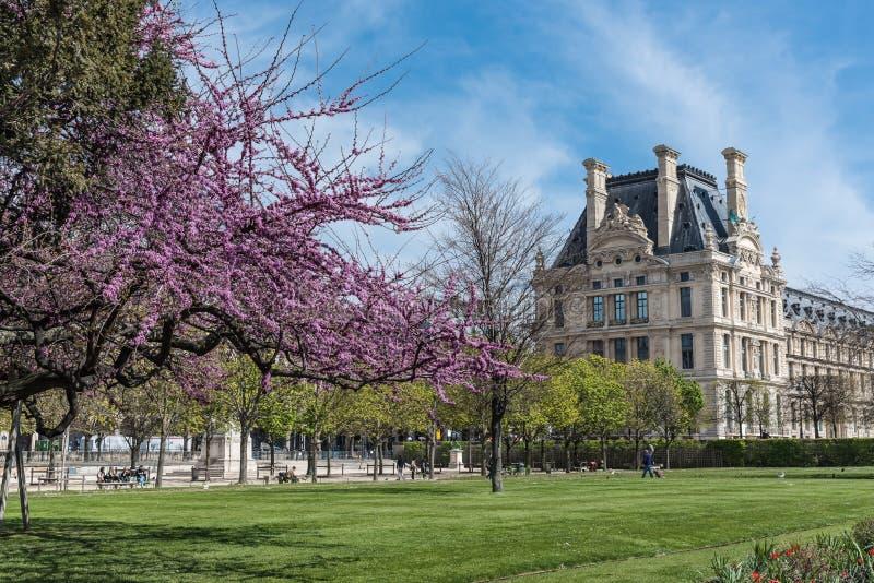 Tuillleries garden, Paris stock photo