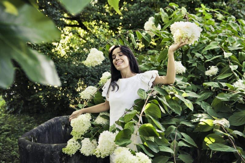 Tuin stock afbeeldingen