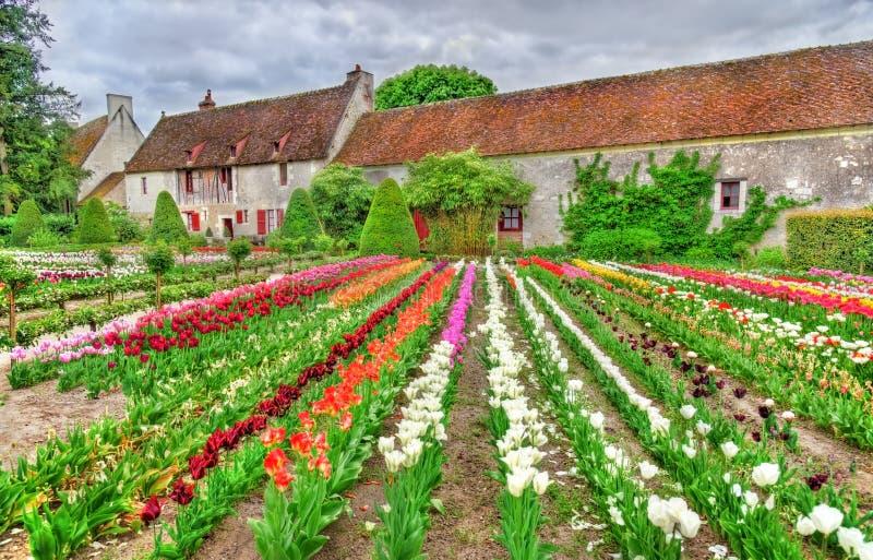 Tuin bij het Chenonceau-Kasteel in de de Loire-Vallei van Frankrijk stock foto's