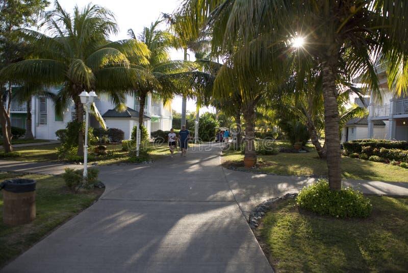 Tuin in Cuba royalty-vrije stock foto's