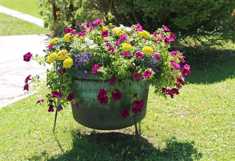Tuin die met een ketel zoals een vaas van bloemen wordt verfraaid royalty-vrije stock afbeeldingen