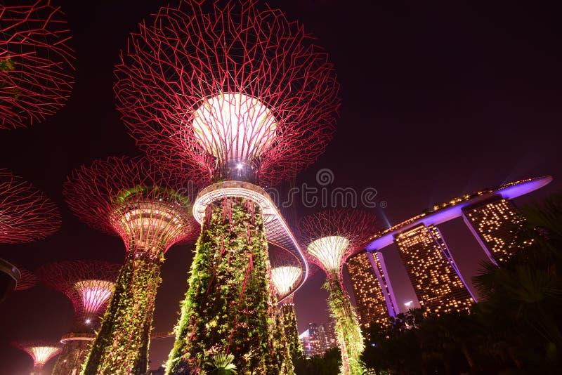 Tuin door de Baai Singapore met rood licht & Marina Bay Sands Hotel op het recht stock afbeelding