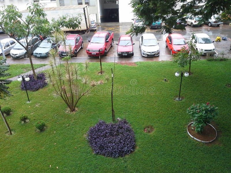 Tuin in een regenachtige dag royalty-vrije stock foto's