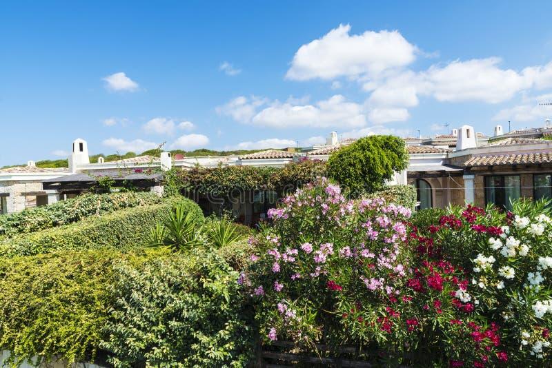 Tuin in een urbanisatie van huizen, Sardinige royalty-vrije stock afbeeldingen