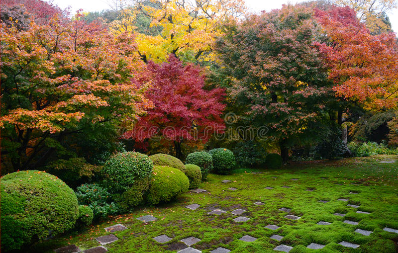 Tuin in Kyoto Japan stock afbeelding