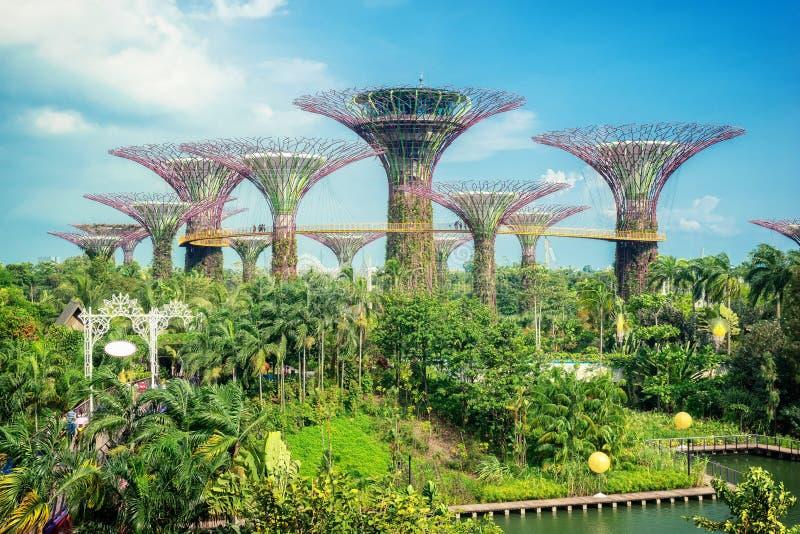 Tuin Marina Bay Sands Singapore stock afbeeldingen