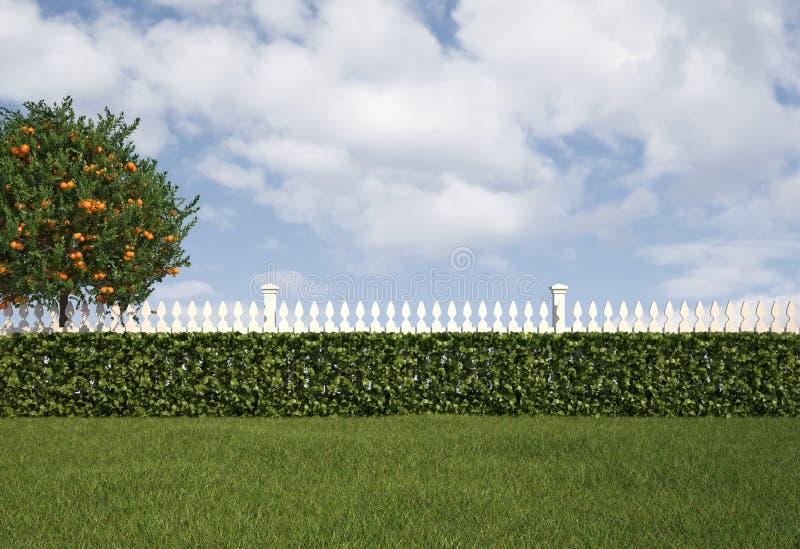 Tuin met omheining en haag stock illustratie