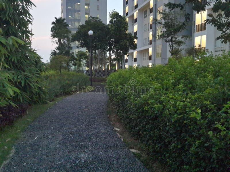 Tuin op vijfde verdieping royalty-vrije stock foto