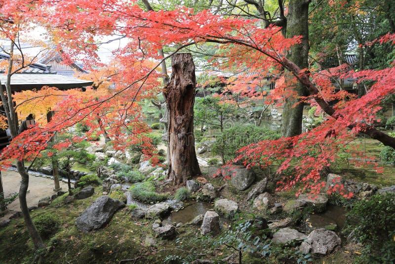 Tuin van byodo-in Tempel in Kyoto, Japan stock foto's