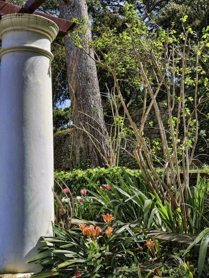 Tuin van een Villa in Anacapri op het Eiland van Capri in de baai van Napels Italië royalty-vrije stock foto