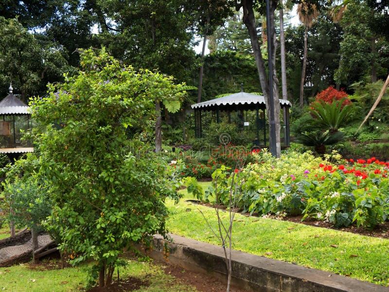 Tuin van het Gouverneurspaleis op het Eiland Madera Portugal royalty-vrije stock fotografie