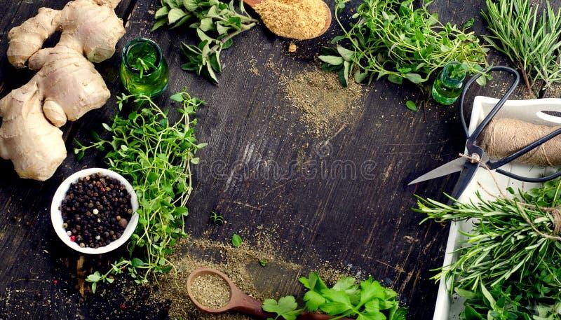 Tuin verse kruiden op een houten lijst stock foto