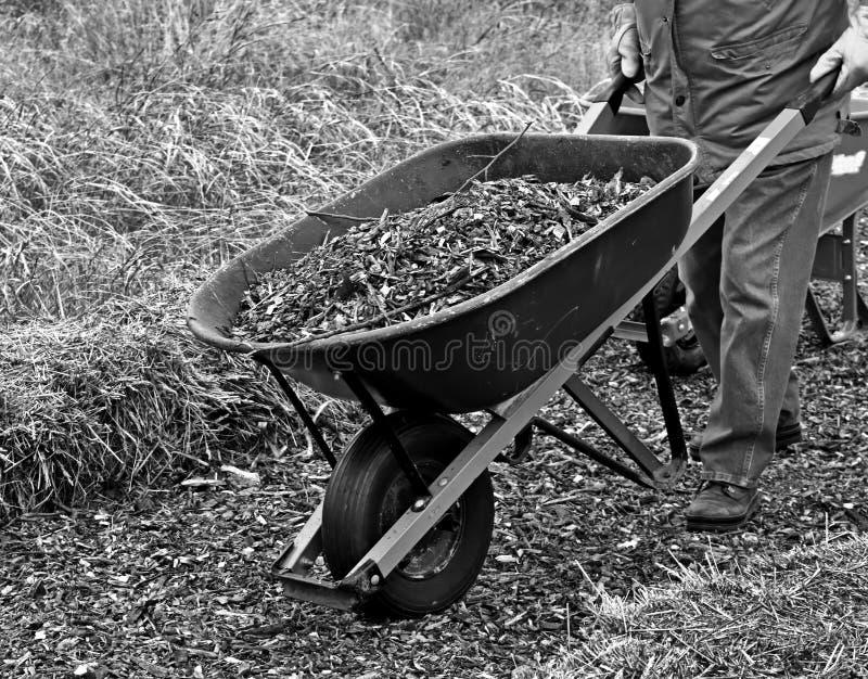 Tuinarchitect die een kruiwagenlading van muls bewegen stock afbeeldingen