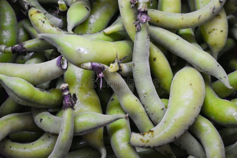 Tuinboon, natuurlijk en gezond voedsel stock foto