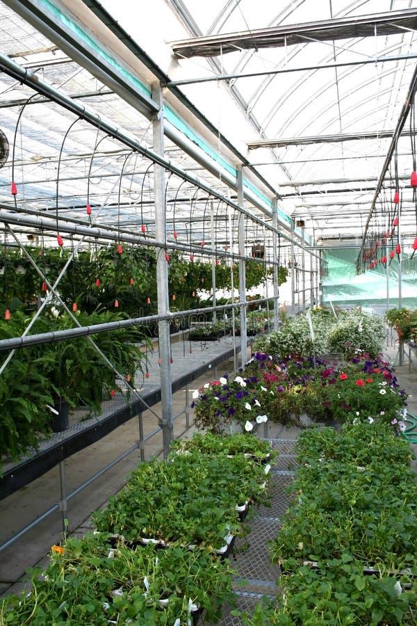 Tuinbouw royalty-vrije stock foto's