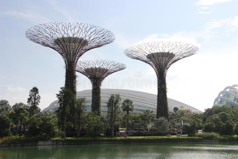 Tuinen door de Baai en de botanische tuin in Singapore stock fotografie